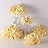 PARTY JOY Artificial Silk Hydrangea Flower Heads Fabric Floral DIY For Wedding Home Flower Wall Decor,Pack of 10 (Champagne)