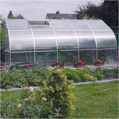 bundle-43 Riga V policarbonato comercial invernadero (2 piezas): Amazon.es: Jardín