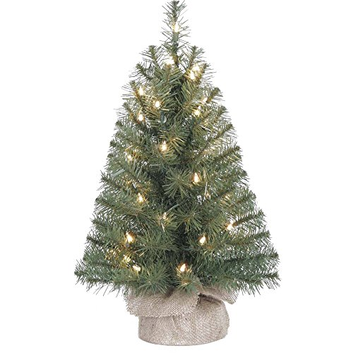 Small Artificial Christmas Tree Pre-lit - 24 inch Evergreen Christmas Tree Pre-lit Battery Operated Lights (1-Pack) Small Pre Decorated Christmas Trees
