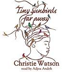 Tiny Sunbirds Far Away   Christie Watson