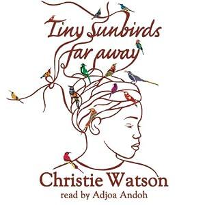 Tiny Sunbirds Far Away Audiobook