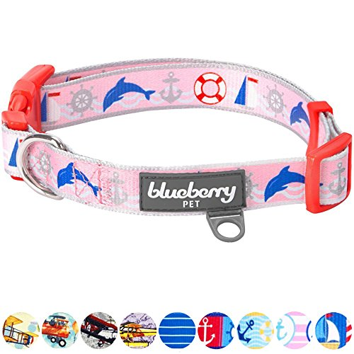 Blueberry Pet New Smart Chic Bon Voyage Ocean Scenery Dolphin Designer Dog Collar, Large, Neck 18