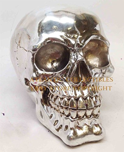 Ky & Co YesKela Human Homo Sapien Skull Chrome Plated Skeleton Halloween Decor Figurine Statue (Chrome Plated Skeleton)