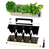Self Watering Planter for Vertical Gardens – Indoor, Outdoor Wall Decor & Gardening Kit with Hanging Bracket - Plants Thrive with No Effort, Ideal for Busy Lifestyles - BloomWall (1, Cream)