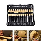 Iglobalbuy Professional 12 Pieces Wood Carving Hand Chisel Tool Set with Carrying Case