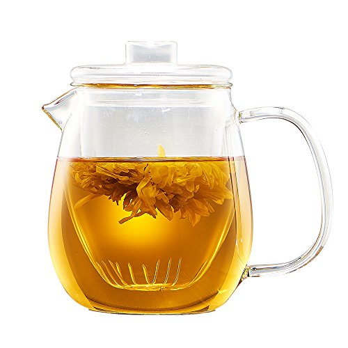 (WarmCrystal, High Borosilicate Glass Teapot with Glass Infuser Set and Lid, Domestic Flower Teapot (20 oz) )