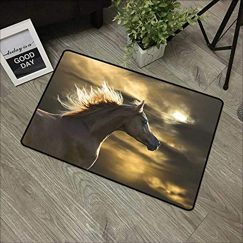 - Bathroom Door mat W24 x L35 INCH Horse Decor,Chestnut Horse Profile on Dramatic Cloudy Sunset Sky Strong Wild Young Mammal,Brown Yellow Non-Slip Door Mat Carpet