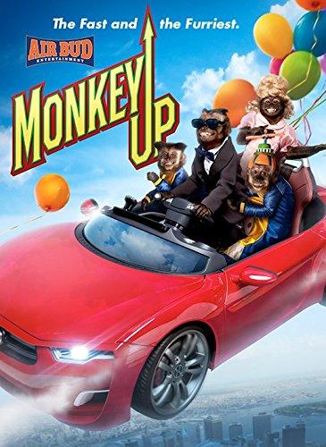 Monkey Up - Woodburn Outlet