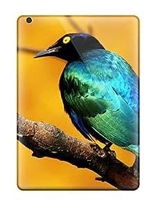 Rachel Kachur Bordner's Shop Series Skin Case Cover For Ipad Air(blue Bird) 7459102K52254456