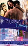 A Tantalizing Tuesday (The Zelda Diaries Book 2)