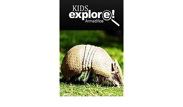 Armadillos - Kids Explore