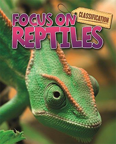 [Free] Reptiles (Classification: Focus on) RAR