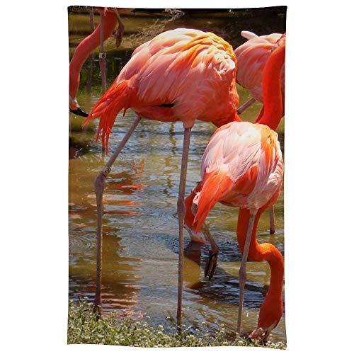 Atunme Linen Tablecloth 60 x 90-Inch Apr OKC Zoo Flamingos Jpg Rectangular Polyester Table Cover -