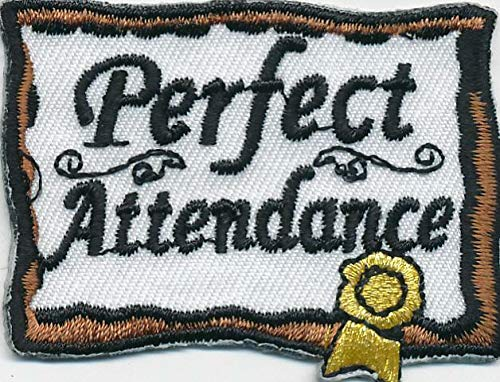 2Pcs Girl Boy Cub Perfect ATTENDANCE Award Fun Patches Crests Badges Scouts Guide