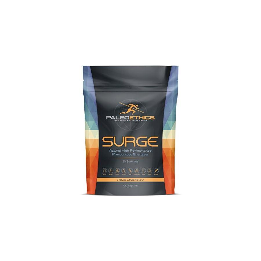 PALEOETHICS PE Sport Surge Natural High Performance Paleo Friendly Pre Workout Energizer, Natural Citrus Flavor, 4.62 Ounce (30 Servings)