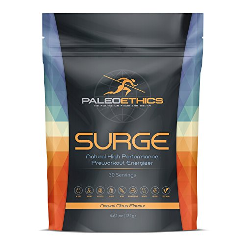 PALEOETHICS Surge Natural High Performance Paleo Friendly Pre Workout, Natural Citrus Flavor, 4.62 oz, 131 grams