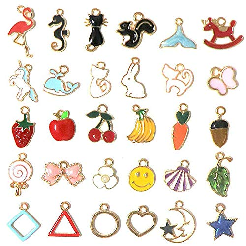 30 Pieces Mix Animals Fruit Cat Leaf Enamel Charm Pendants DIY for Necklace Bracelet Dangle Jewelry Making and Crafting