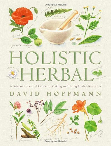Download Holistic Herbal: A Safe and Practical Guide to Making and Using Herbal Remedies ebook