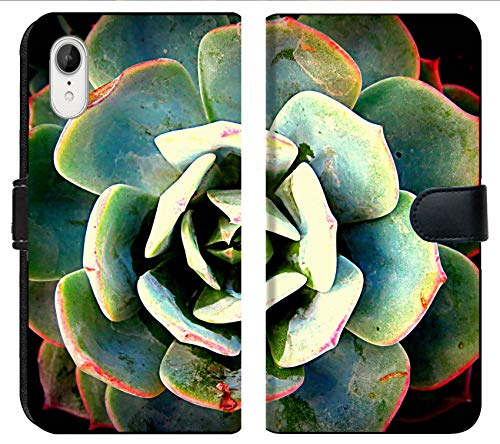 Apple iPhone XR Flip Fabric Wallet Case Image of Green Nature Leaf Plant Natural Macro Garden Flora Succulent Background Botany Life Growth Detail Color