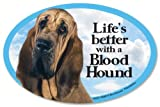 """Bloodhound Oval Dog Magnet for Cars (and fridges too!). Includes bonus """"I Love My Dog"""" decal."""