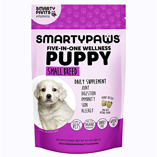 SmartyPaws Dog Supplement Chew-  MSM for Joint Support, Fish Oil Omega 3 (EPA & DHA) for Skin, Digestive Probiotics, Organic Turmeric: Puppy Small Breed – by SmartyPants Vitamins – 60 ct For Sale