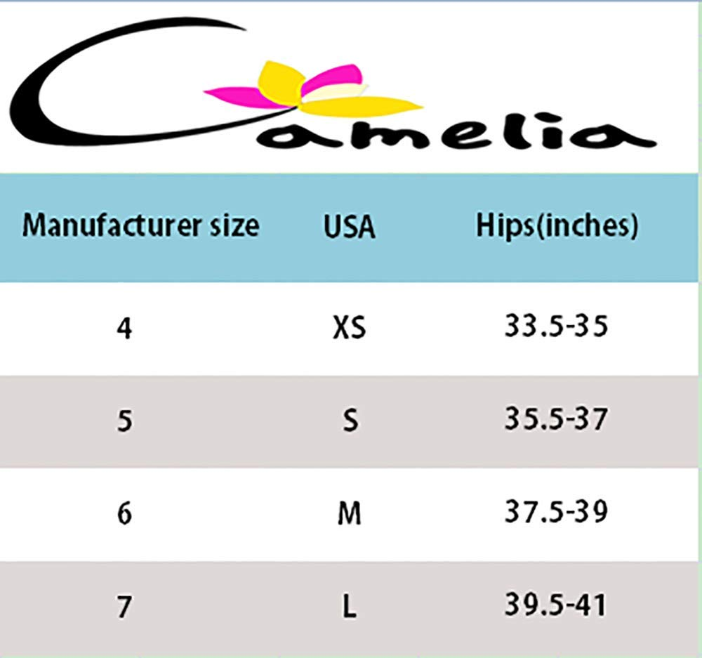 Camelia Women's High End Lace String Georgette Bikini Panty