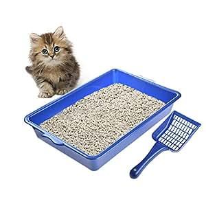 Somedays - Arenero semicircular para Gatos con Pala para Mascotas: Amazon.es: Productos para mascotas