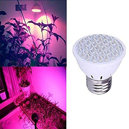 Pflanzenlampe,Bloomwin pflanzenbeleuchtung Led Wachsen Licht E27 2.2W LED Birne Wachstum AC100-245V Zimmerpflanzen Pflanzenlichte Rot Und Blau Licht