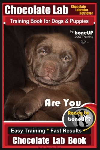 Chocolate Lab Chocolate Labrador Retriever Training Book for Dogs & Puppies By BoneUP DOG Training: Are You Ready to Bone Up? Easy Steps * Fast Results Chocolate Lab Training (Volume ()