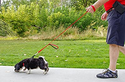 Sofi's Double Handled, Soft Neoprene Padded Nylon Dog Leash - Heavy Duty Traffic Handle - Positive Control at two lengths (1 foot and 5 feet)
