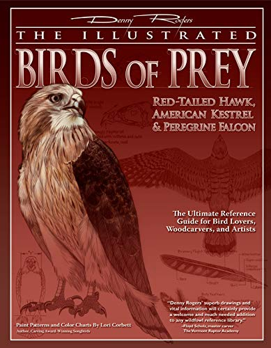 (Illustrated Birds of Prey: Red-Tailed Hawk, American Kestral, & Peregrine Falcon: The Ultimate Reference Guide for Bird Lovers, Woodcarvers, and Artists (The Denny Rogers Visual Reference series))