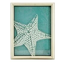 Marine Life Collection Star Fish Shadowbox Decor