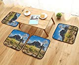 Printsonne Home Chair Set Famous Cany Cliff with Dramatic Cloudy Sky Southwest Terrain Place Nature Machine-Washable W21.5 x L21.5/4PCS Set