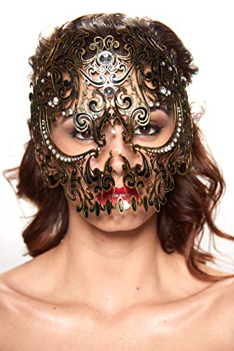 Skull Full Face Metal Filigree Masquerade Halloween Mask (Vintage with Clear -