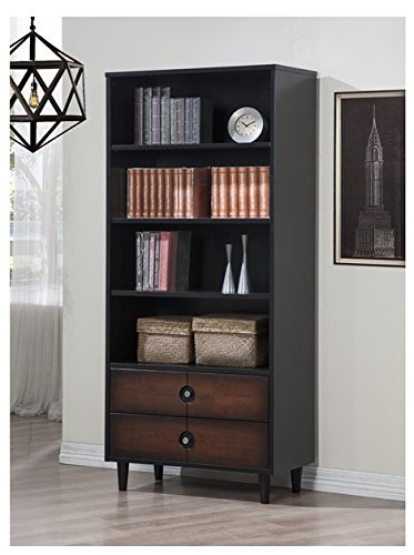 Decorative Black 2-drawer Bookcase by Allen
