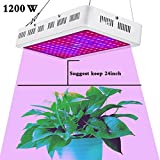 Cheap HollandStar LED Grow Light Full Spectrum 1000 Watt/1200W for Indoor Plants Veg and Flower (1200W)