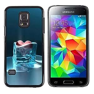 FlareStar Colour Printing Heart Of Glass Frozen Heartbreak Ice Cold cáscara Funda Case Caso de plástico para Samsung Galaxy S5 Mini / Galaxy S5 Mini Duos / SM-G800 !!!NOT S5 REGULAR!