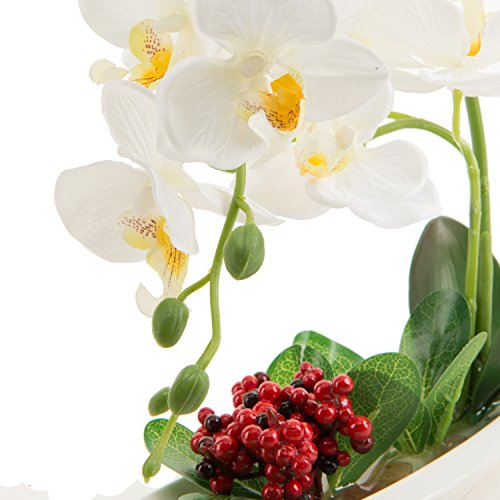 Phaleanopsis Orchid Silk Flower Arrangement With White