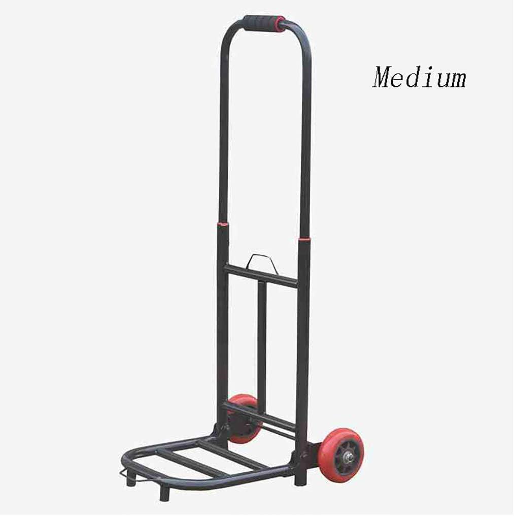 QARYYQ Hand Cart Trolley Folding Portable Mute Flatbed Truck Trolley Trailer 6 Colors Trolley Size : B