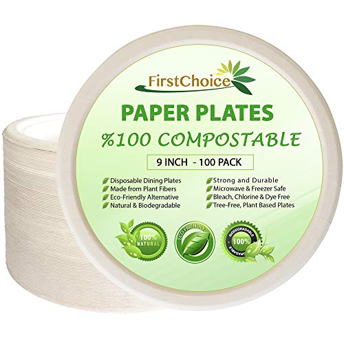 Disposable Plates, 9 Inch Round Plates, 100 Counts, Natural Sugarcane Bagasse Bamboo Fibers, Sturdy, Compostable Eco Friendly Environmental Plate, Paper & Plastic Plate Alternative, Tree Plastic Free
