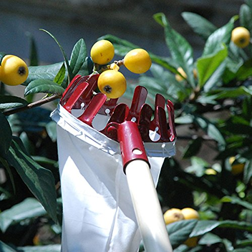 Home-organizer Tech Fruit Picker Package Useful Fruit Picker Pole Gardening Apple Pear Peach Picking Tools( Color in random may white, red, orange)