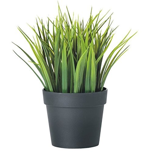 FEJKA Artificial Potted Plant, Wheat Grass,green 7.75 Inch by FEJKA