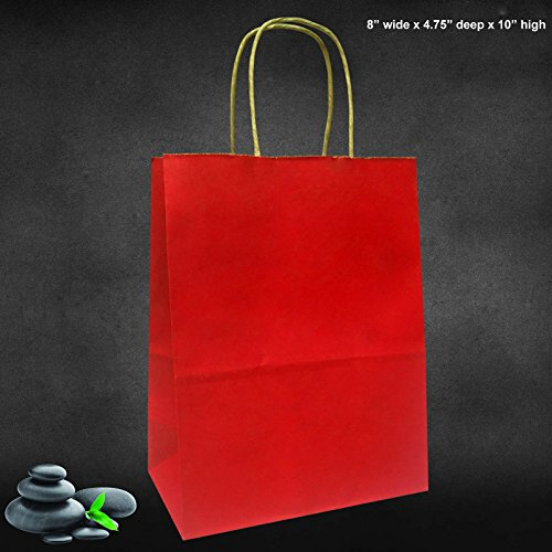 Medium Size Paper Gift Bags with Handle 8