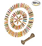 Magnolora 100Pcs Colored Natural Wooden Clothespins Photo Paper Peg Pin Craft Clips Bundle with 66 Feet Jute Twine