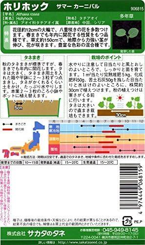 サカタのタネ 実咲花6815 ホリホック サマーカーニバル 10袋セット