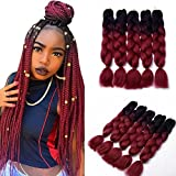 JIAMEISI Two Tone Ombre Jumbo Braid Hair Extension 5Pcs/Lot 100g/pc Kanekalon Fiber for Twist Braiding Hair (Black-Burgundy)