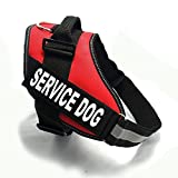 Fairwin Service Dog Harness, Dog Reflective Vest with Service Dog Patches for Large Medium Small Dogs (L :Fits Girth20-26in, Red)
