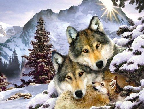 Wolf Harmony Jigsaw Puzzle 500 Piece