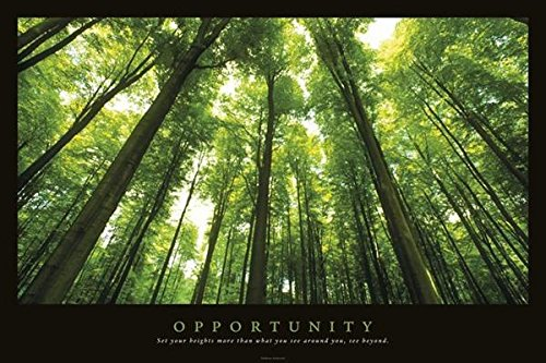 Opportunity Inspirational Poster Print