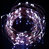 HAHOME Waterproof Led String Lights,33Ft 100 LEDs Indoor and Outdoor Starry Lights with Power Supply for Christmas Wedding and Party Decoration,Cool White